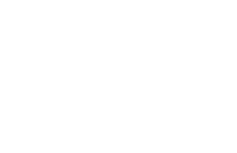Whipping up online sales for premium pet food brand