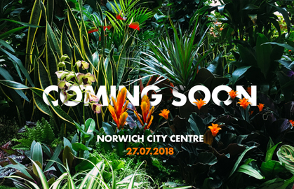 Further works with Blooming Artificial on their pop-up garden for Norfolk Day!